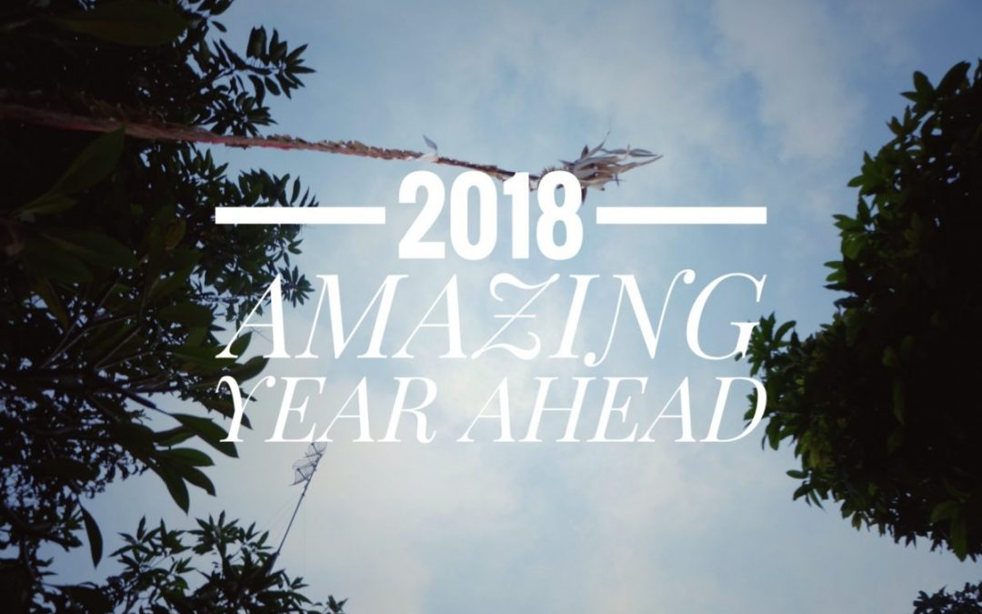 SHL Asia Looking Back at 2017 and Welcoming 2018