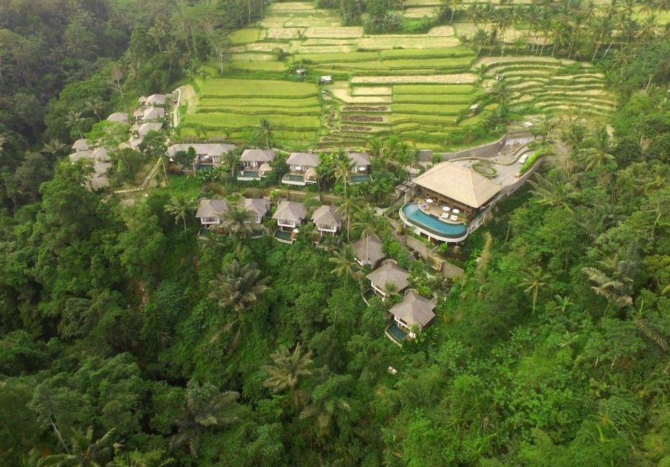 Behind The Scene: The Creative Process of Making The Landscape Design of Natya Resort Ubud